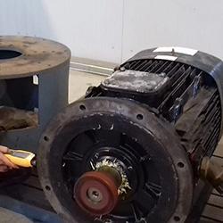 Misure Vibrazione Motore 188 KW 400 V